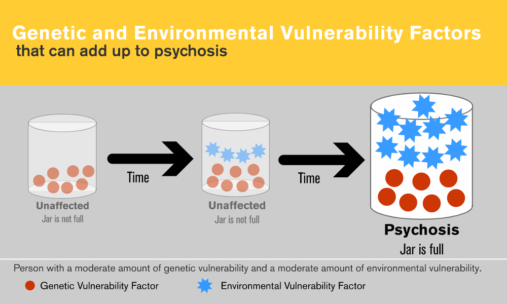 Genetic and Environmental Vulnerability Factors that can add up to psychosis