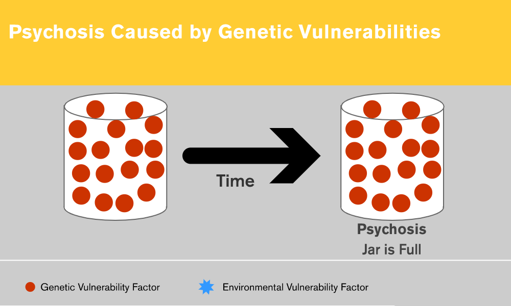 Psychosis Caused by Genetic Vulnerabilities