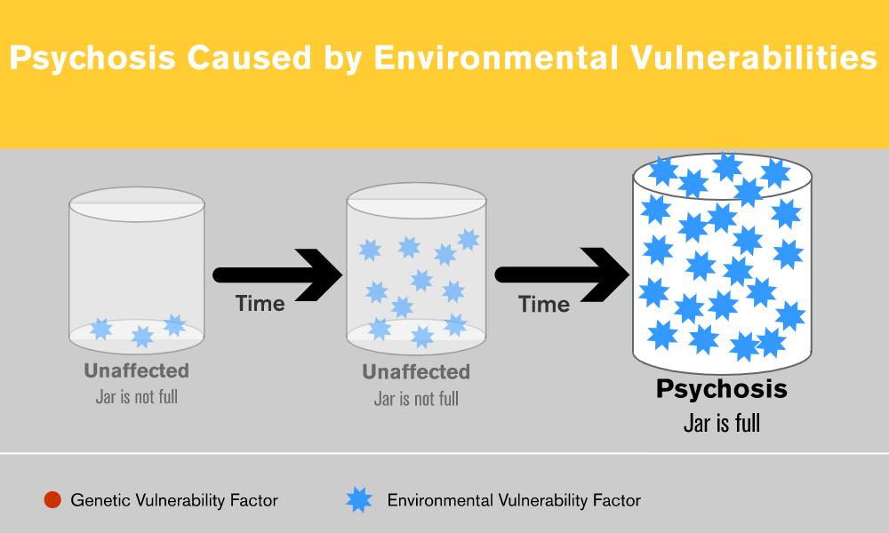 Psychosis Caused by Environmental Vulnerabilities